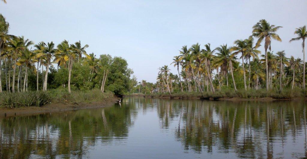poovar backwater