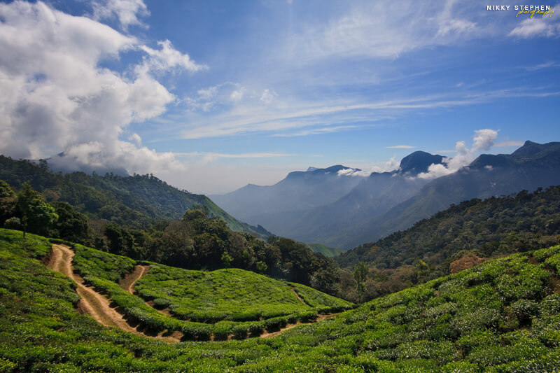 Kerala-view