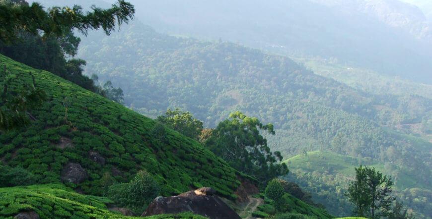 Munnar Tourist Places