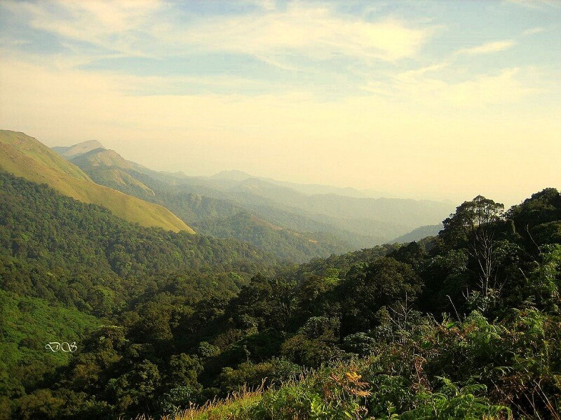 Wayanad Hill Station