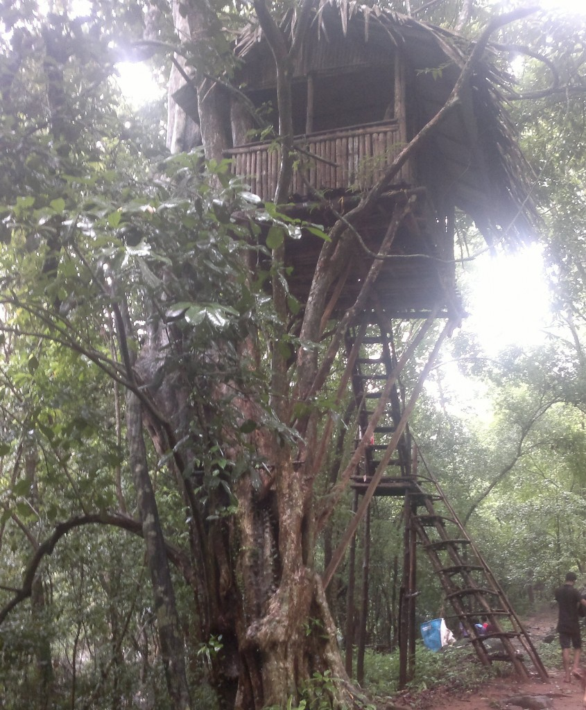 watch tower inside forest