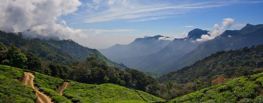 10 Most Beautiful Places To Visit In Kerala During Winter Season
