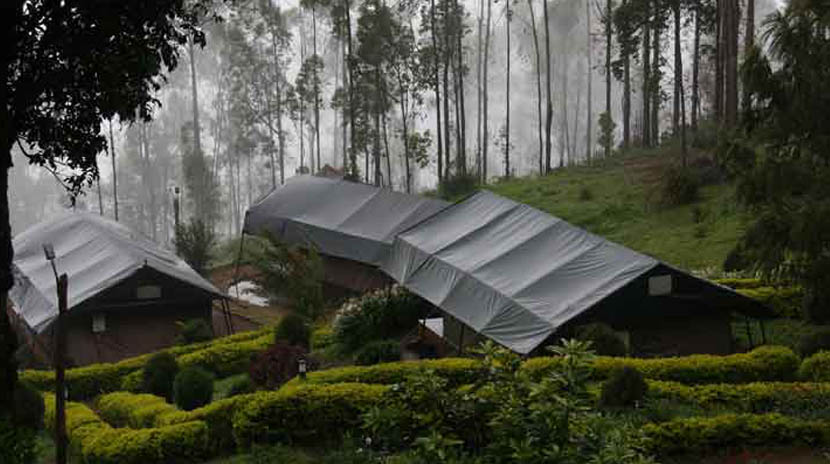 Nature-Zone-Jungle-Park-Resort-Best-Tree-House-Resort-in-Munnar