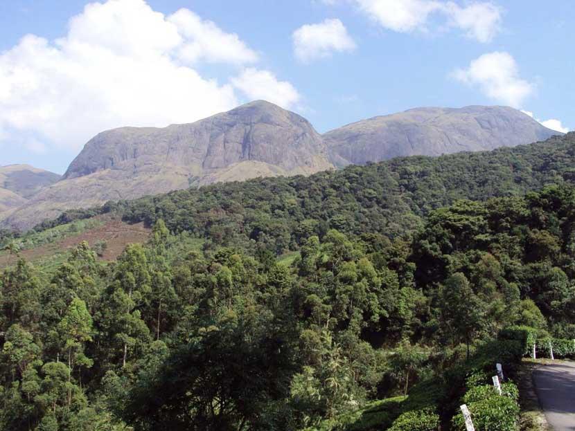anamudi peak in munnar