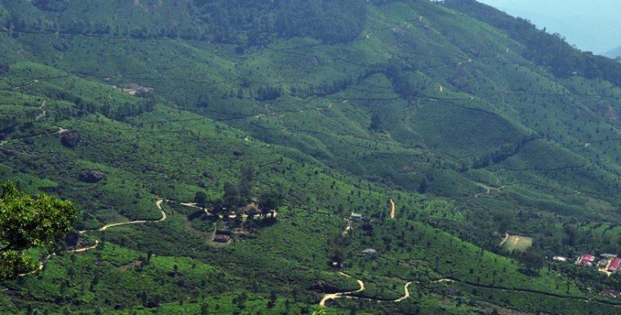Thekkady Hill Station