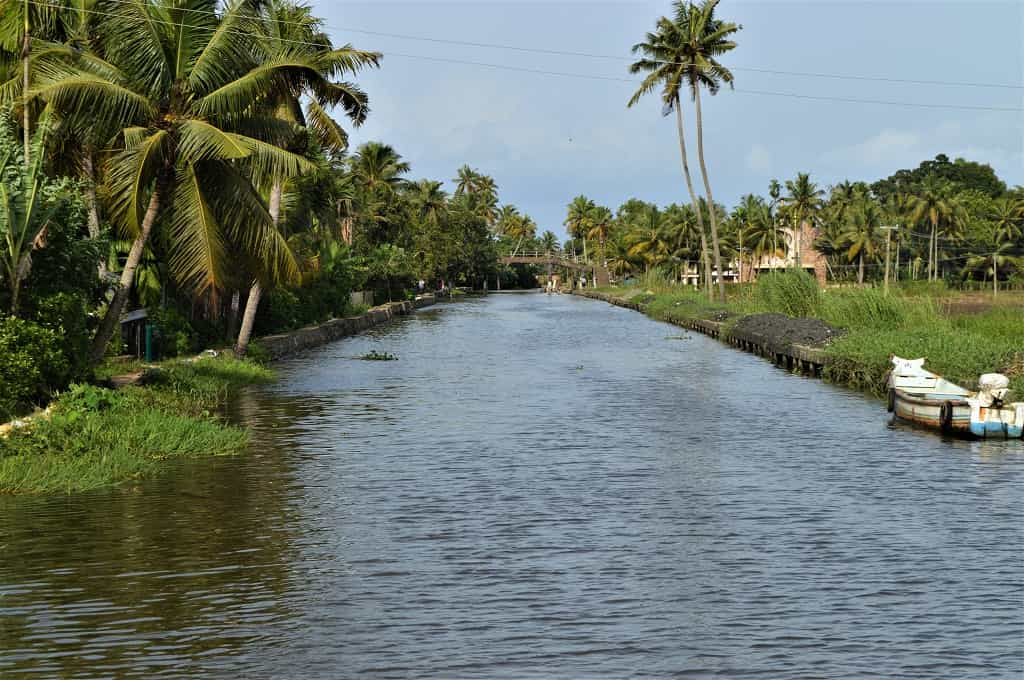 Canals in Alleppey