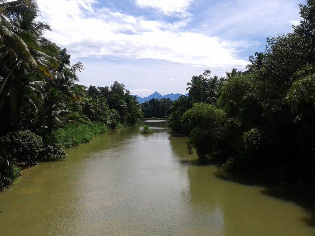 neyyar-river