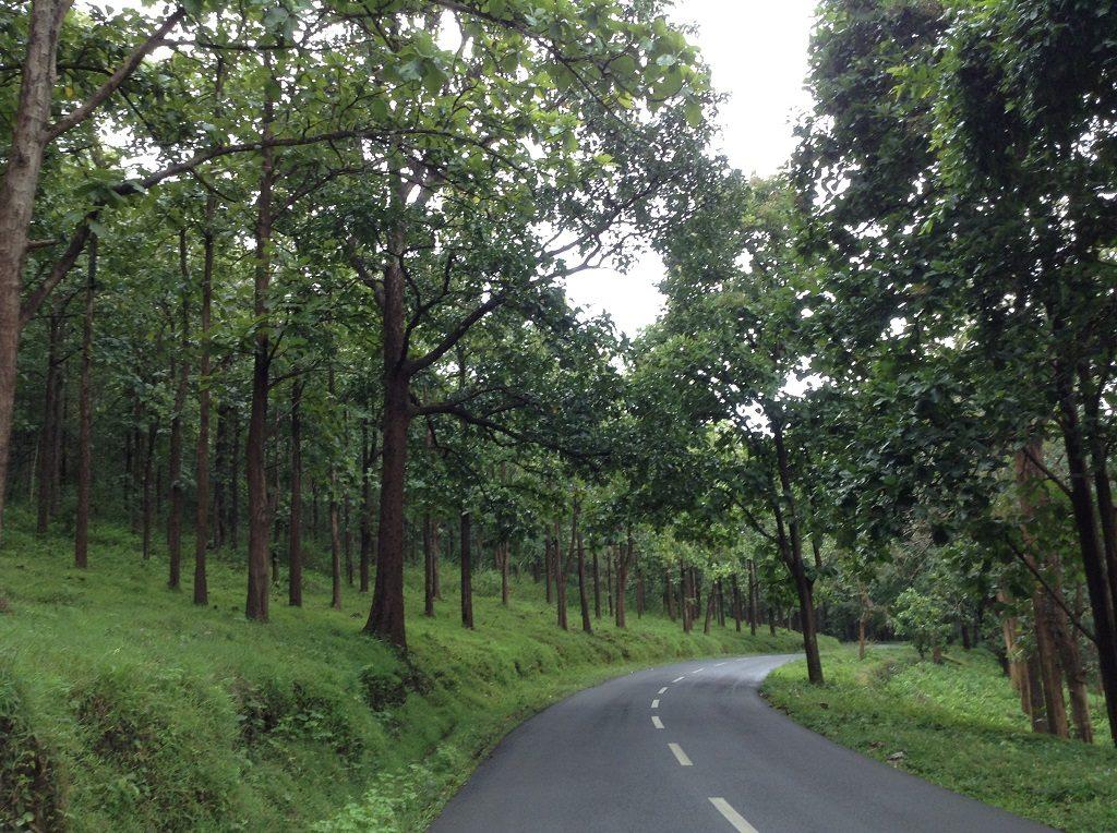 Kerala-road