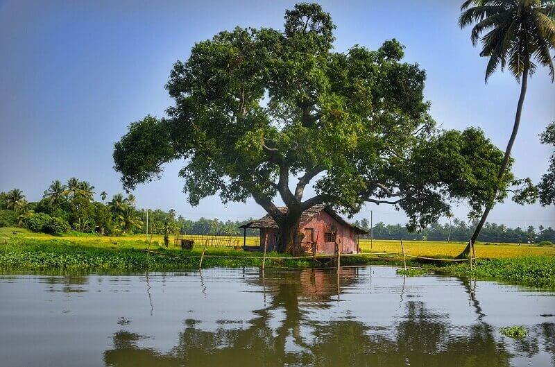 Kerala-why-it is-famous-shooting-location-in-india