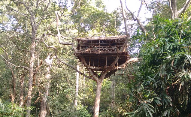 Book Tree House In Kerala At Cheapest Price