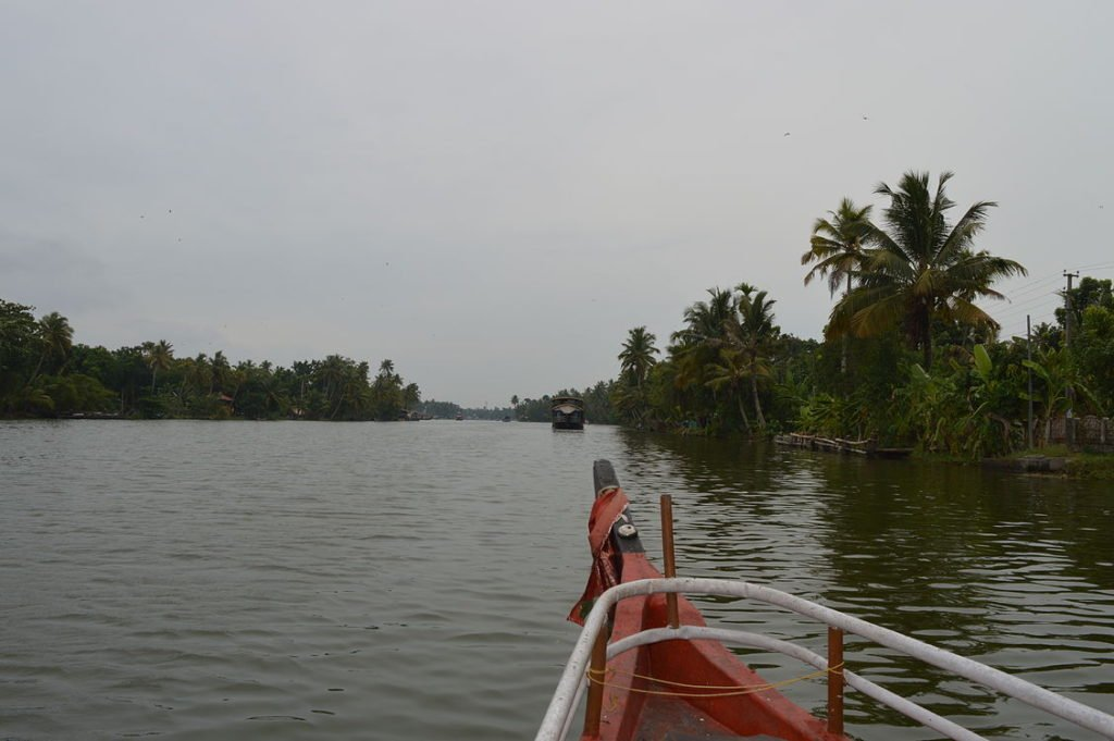 Pallathuruthi River