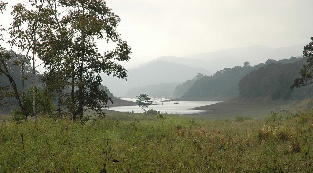 periyar-national-park