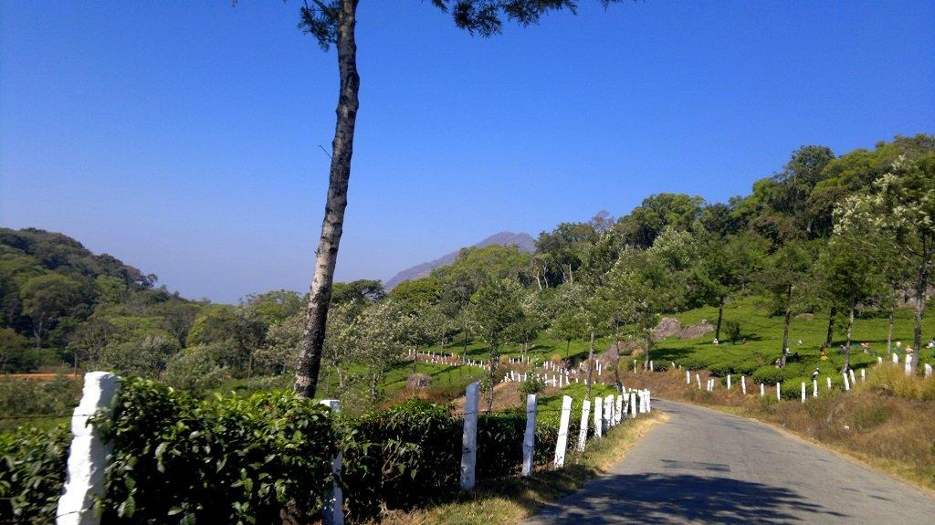 Munnar-thekkady-route