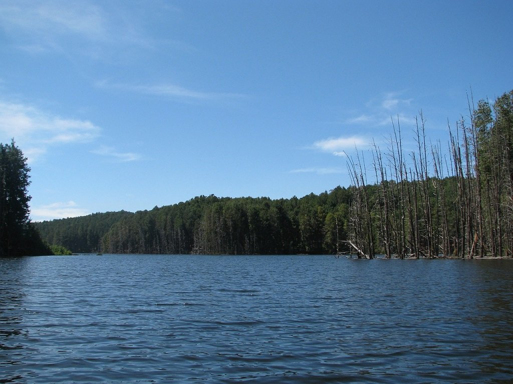 Kodailkanal-lake